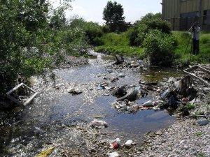 Bistrica river