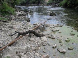 Ispust otpadnih voda motela na Glavi Zete